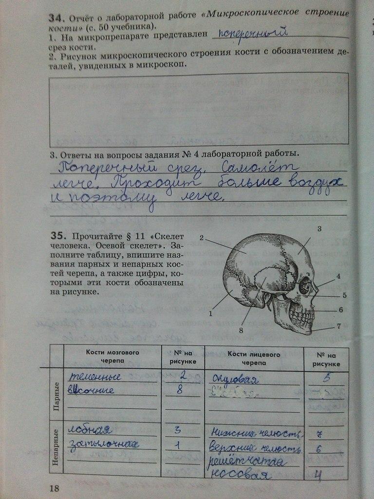 Гдз по тетради по биологии 6