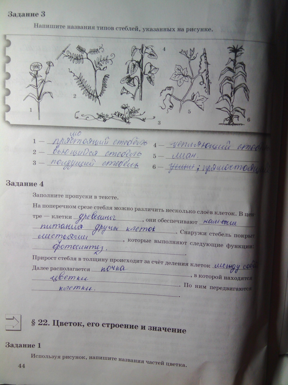 Решебник по биологии 6 класс учебник автор пономарева 2018 год