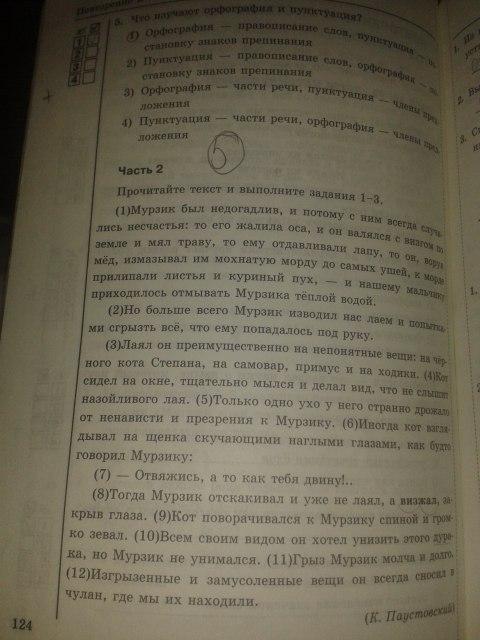 Решебник По Русскому Языку Рабочий Тетрадь 6 Класс Ладыженской