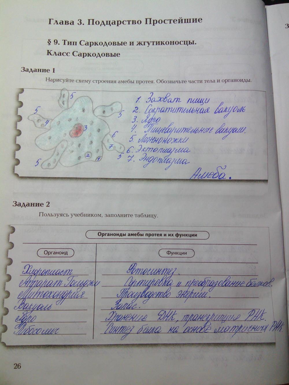 гдз по рабочей тетрадки по биологии