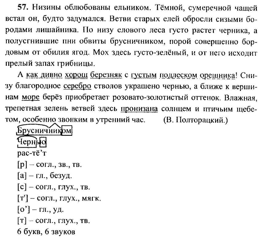 По 6 класса номер 7 гдз русскому языку