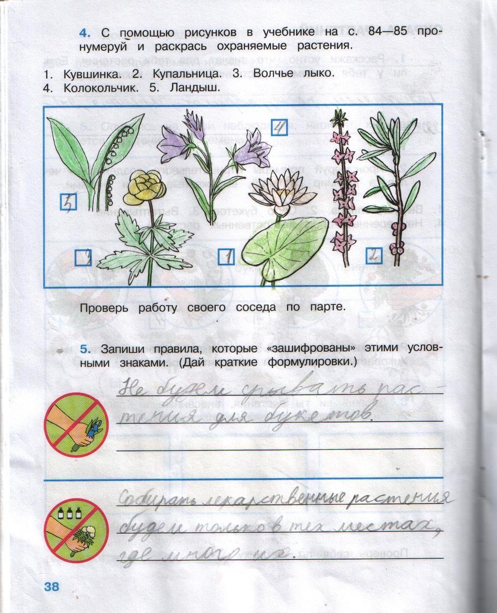 фотографий гдз к рабочей тетради о в картинках карта казахстана это