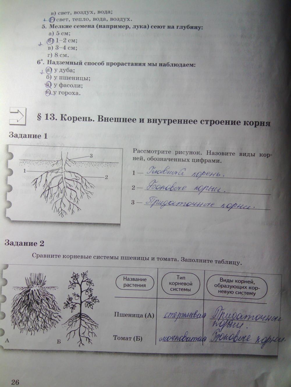 гдз по биологии 6класса рабочая тетрадь часть 2 пономарев корнилов