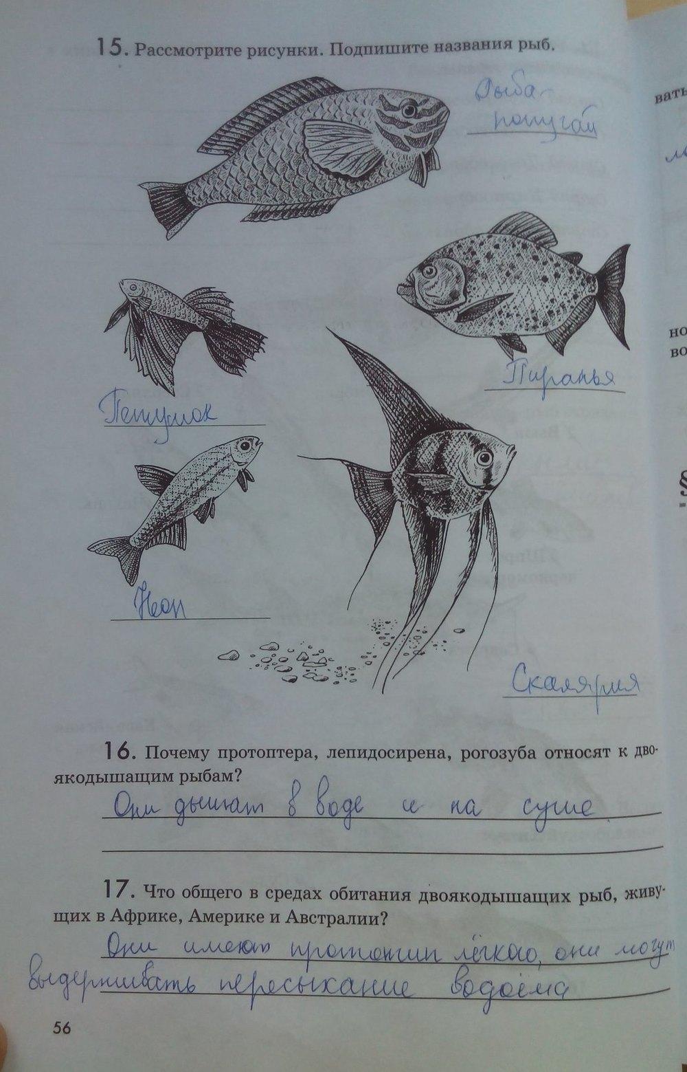 Биологии рабочей рыбками по с 7 в тетради гдз класс