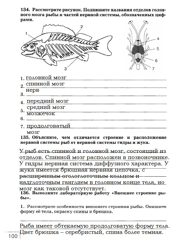 рабочей с в гдз тетради класс биологии рыбками 7 по