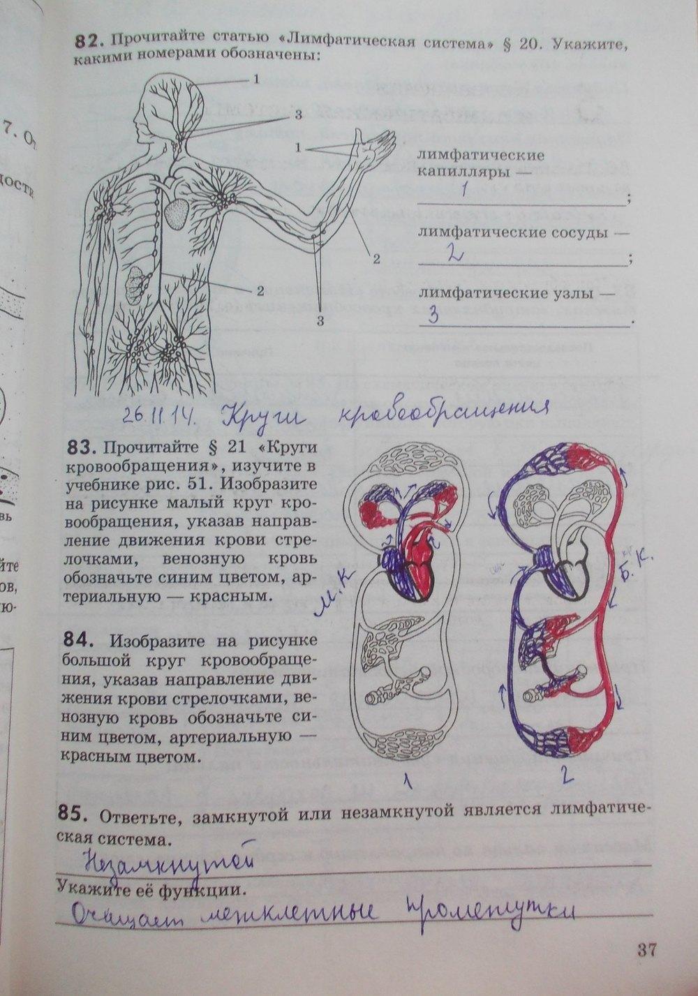 биология гдз по теради
