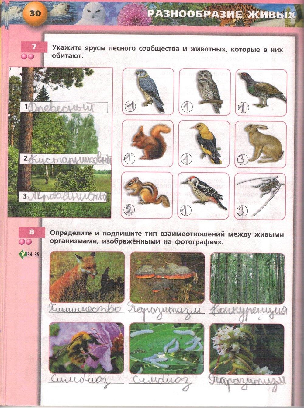 Организм тетрадь гдз класс рабочая 6 биология живой
