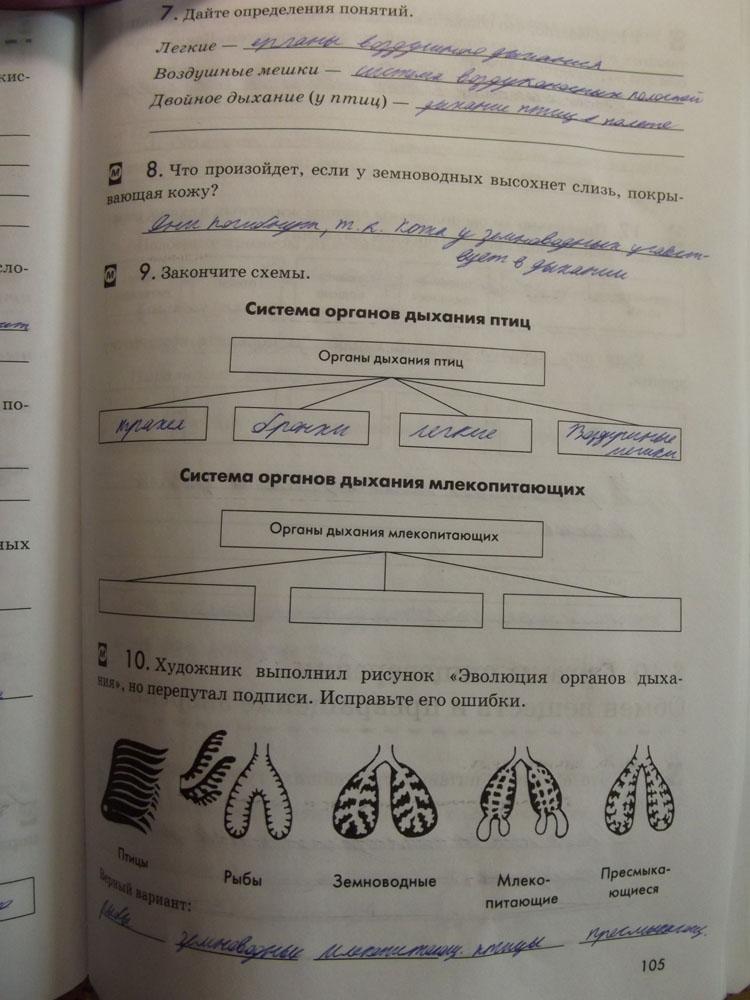 Готовое Домашние Задание По Биологии 7 Класс Рабочия Тетрадь В.в.латюшина