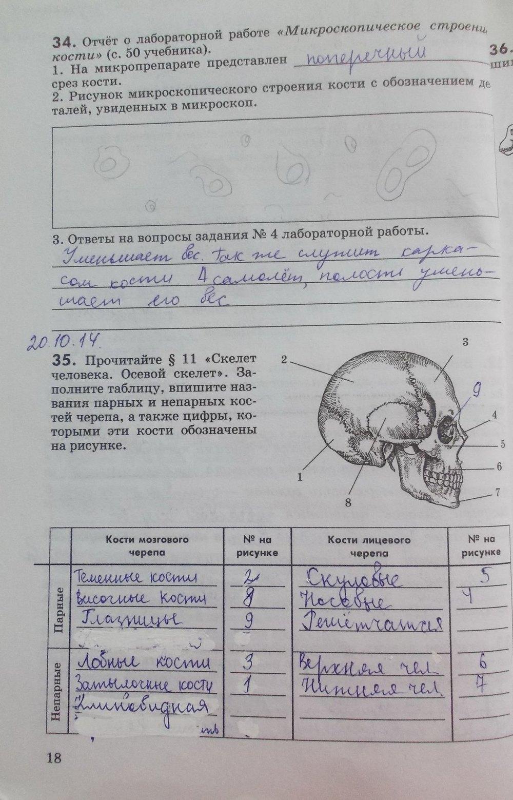 Запорожець,влащенко 8 Класс Биология Гдз Ответы На Лабораторые Работы