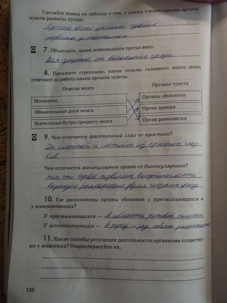 6 тетрадь решебник литературе кочергина класс по