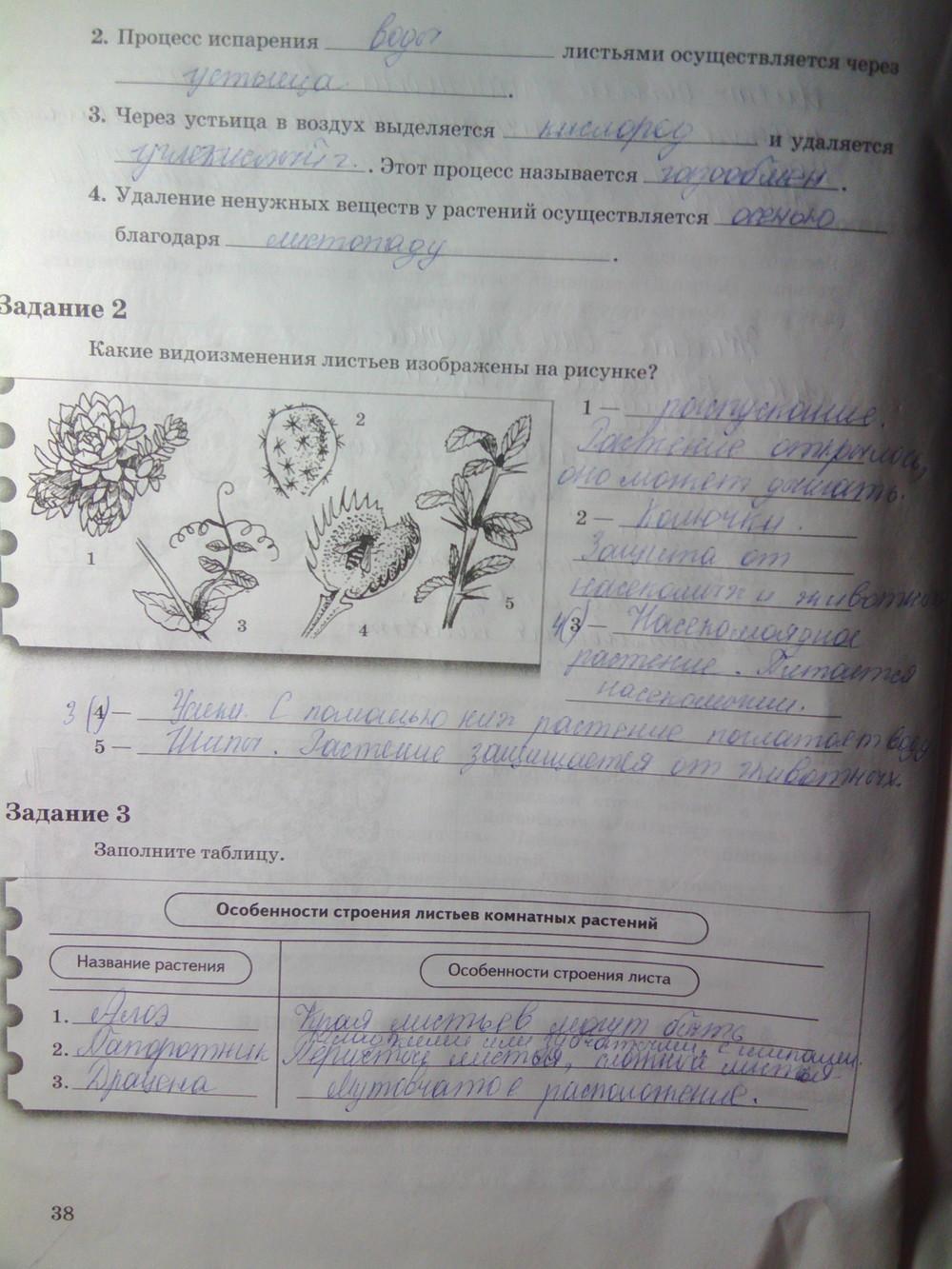 Часть биологии класс по 2 гдз вентана-граф 6