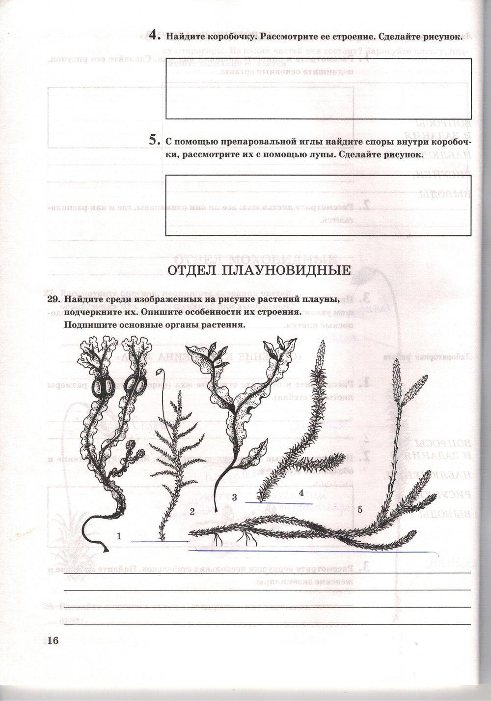 Гдз Биология Рабочая Тетрадь 7 Класс Н И Сонин