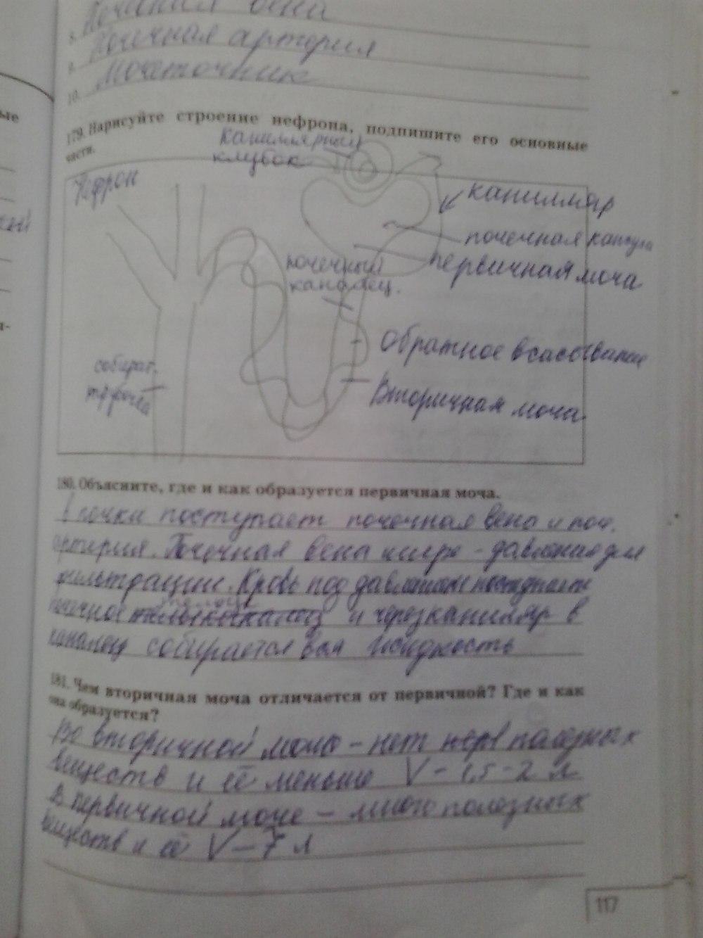 Гдз Рабочей Тетради По Биологии
