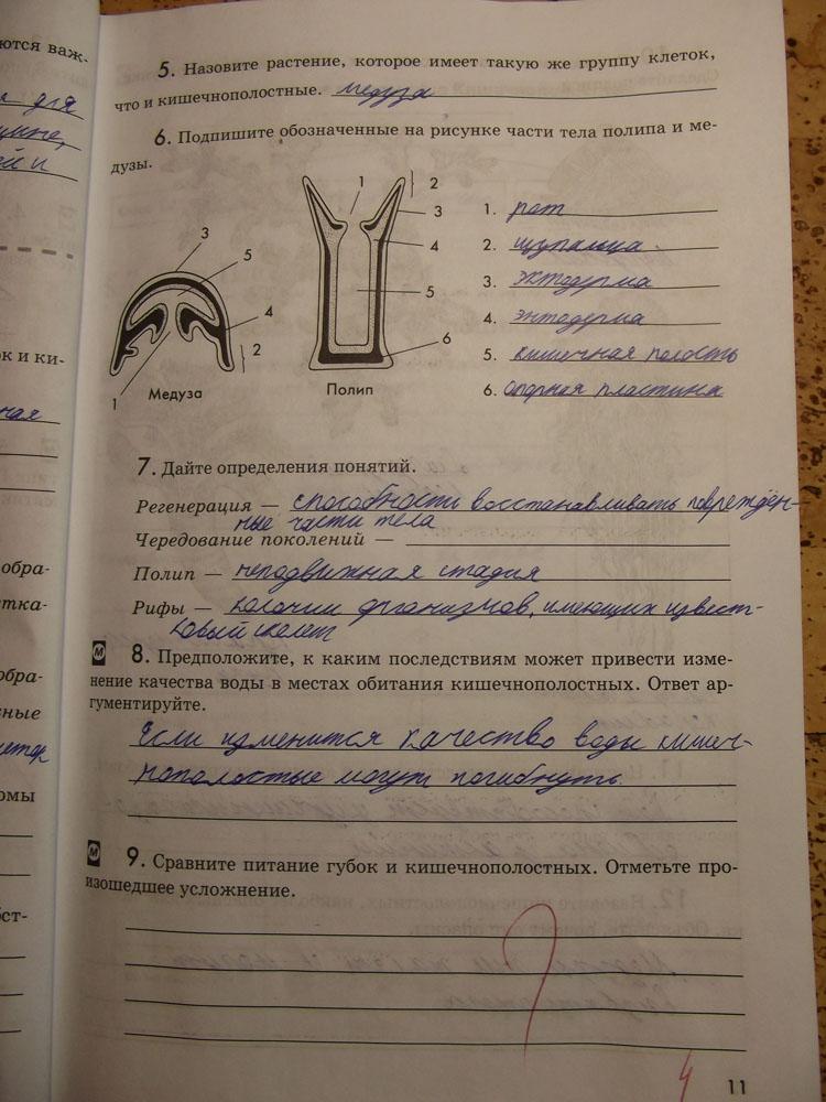 ГДЗ по Биологии 7 класс В. В. Латюшин, В. А. Шапкин