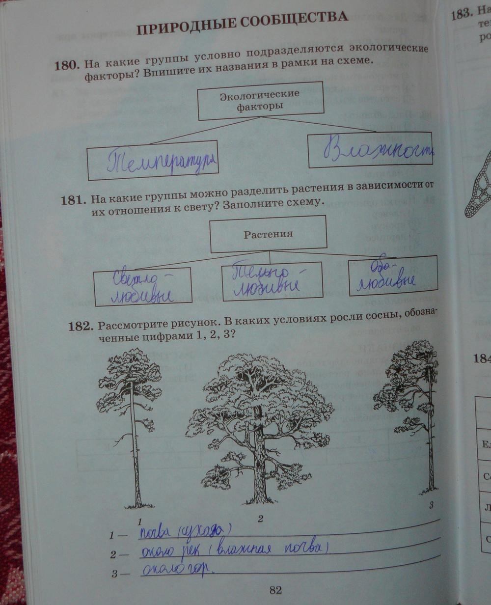 Гдз По Биологии 6 Класс Пасечник Зеленая Тетрадь С Ракушкой