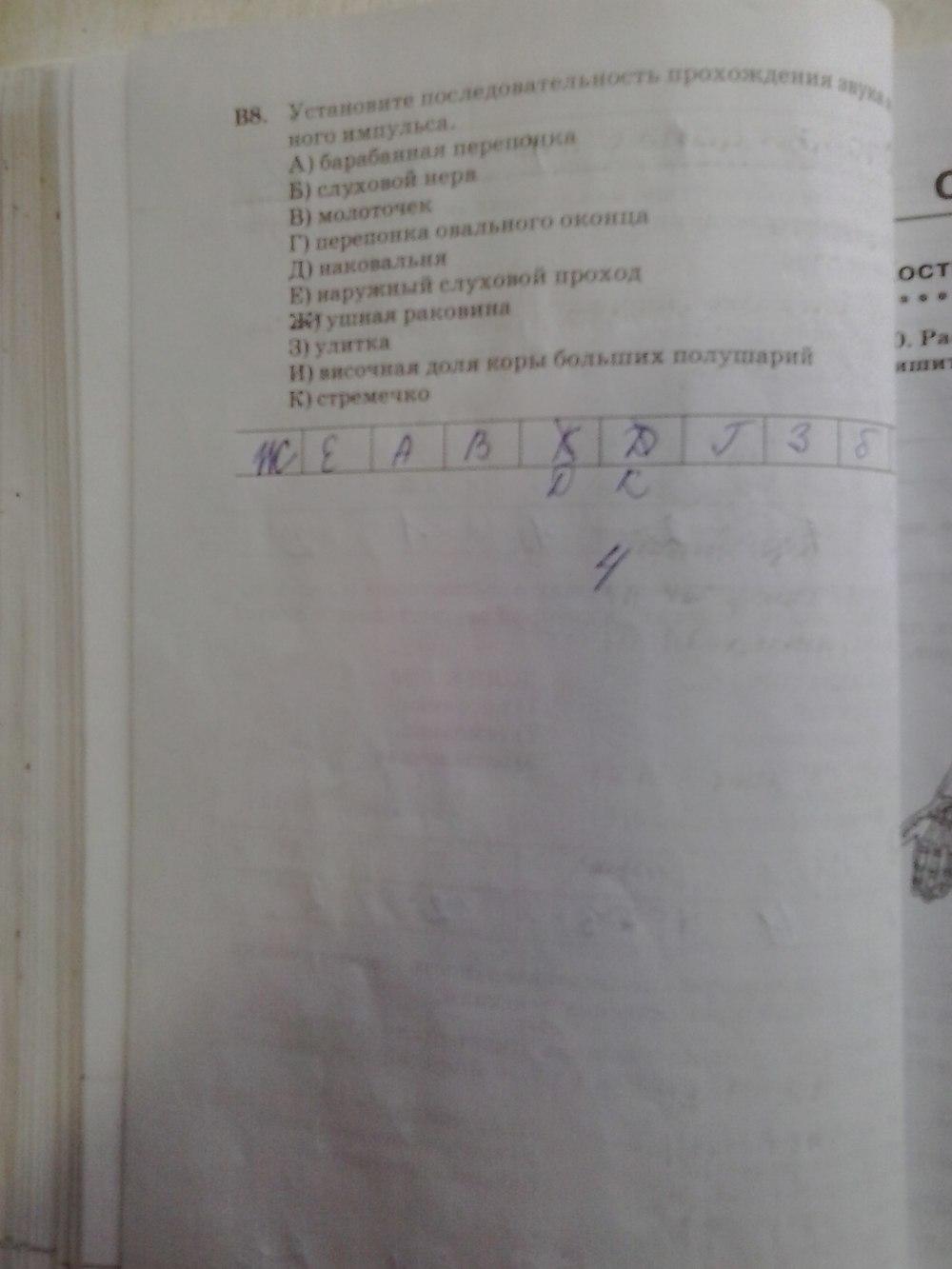 Гдз Биология Человек Рабочая Тетрадь 8 Класса Сонин