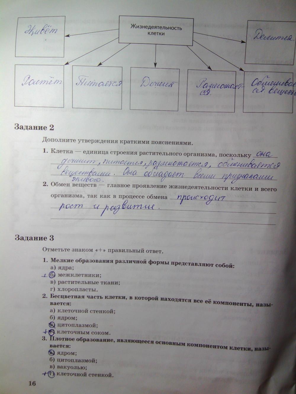 Гдз В Тетради По Биологии 6 Класс Пономарева 2 Часть