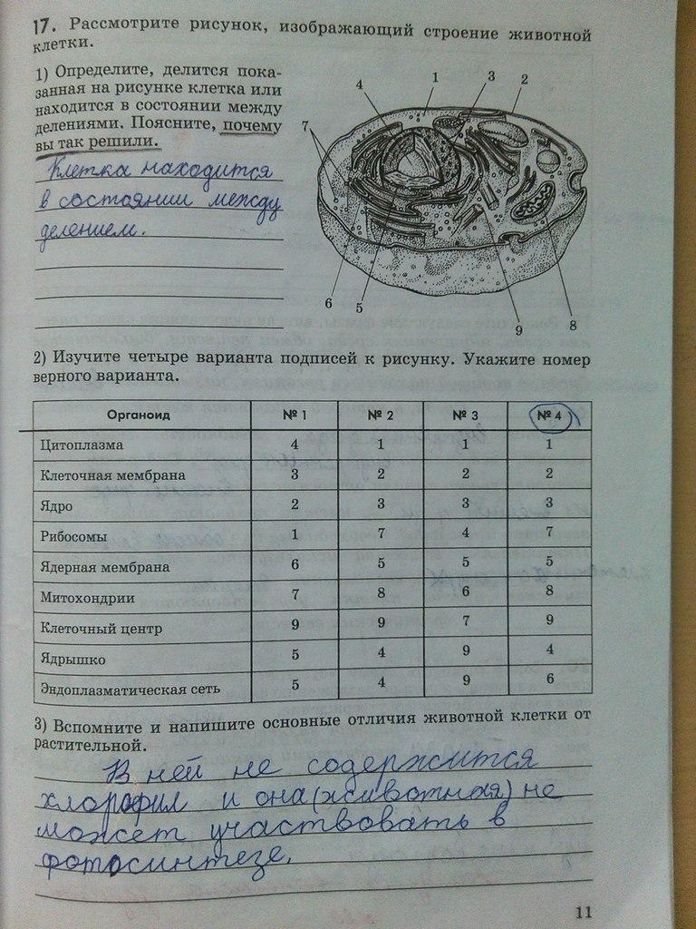 рабочая гдз жёлтая класс тетрадь 6 биологии по