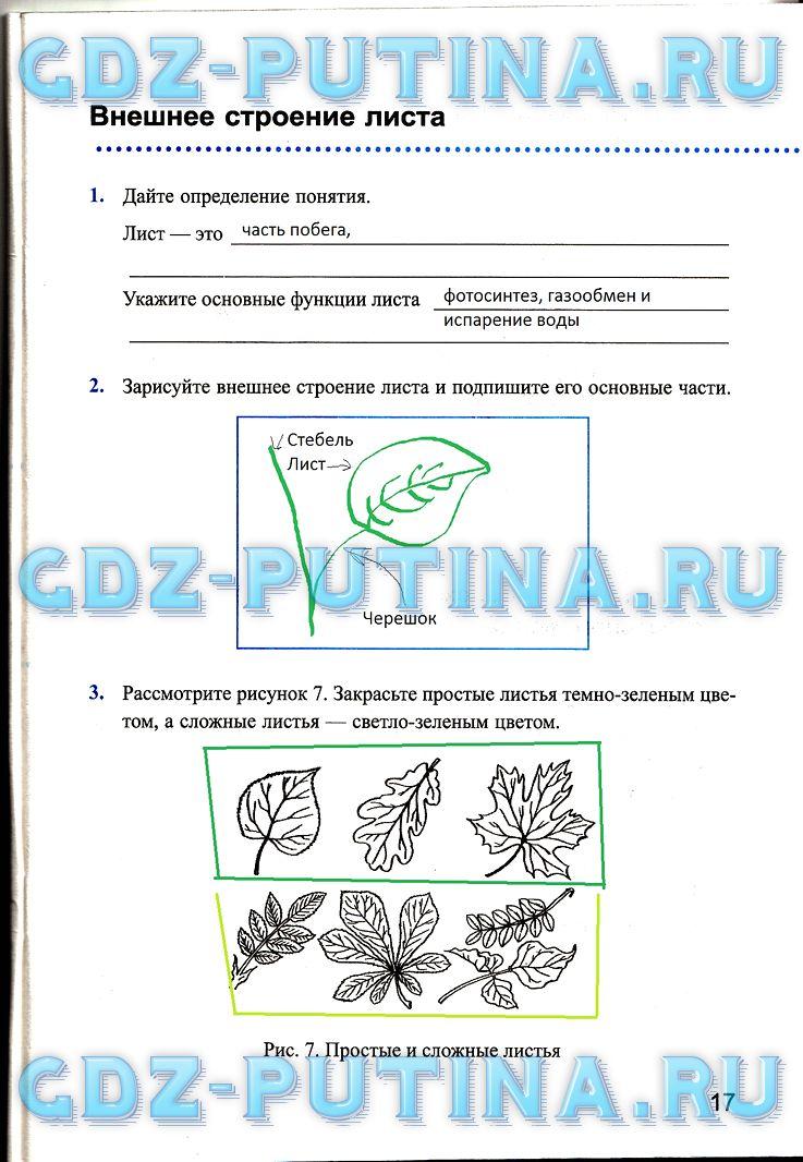 ГДЗ по биологии 5 класс рабочая тетрадь Преображенская