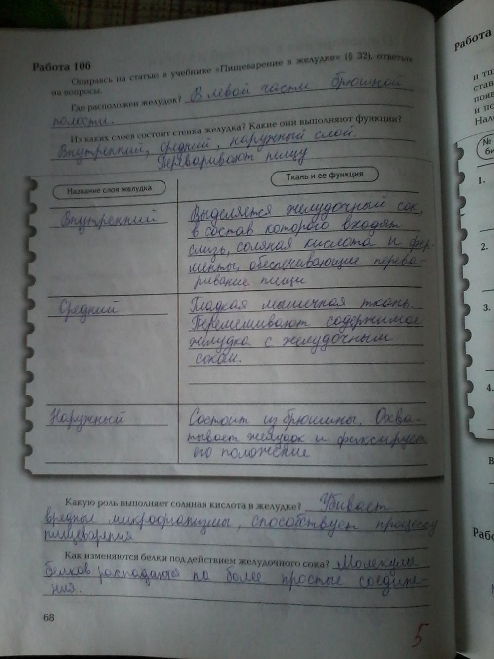 Гдз по биологии 8 класс драгомилов проверь себя ответы по учебнику