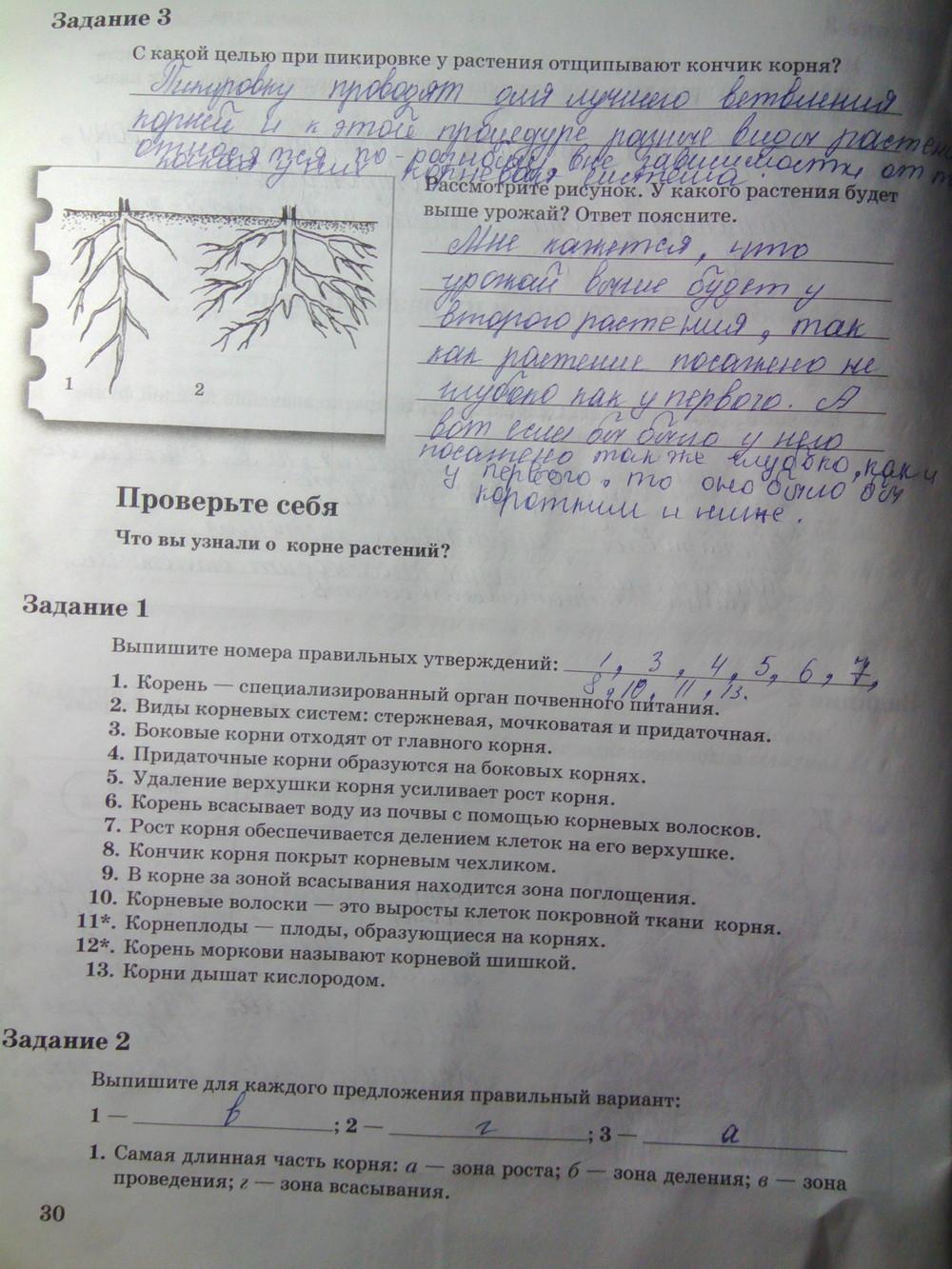 тетрадь по биологии 6 класс пономарева не гдз