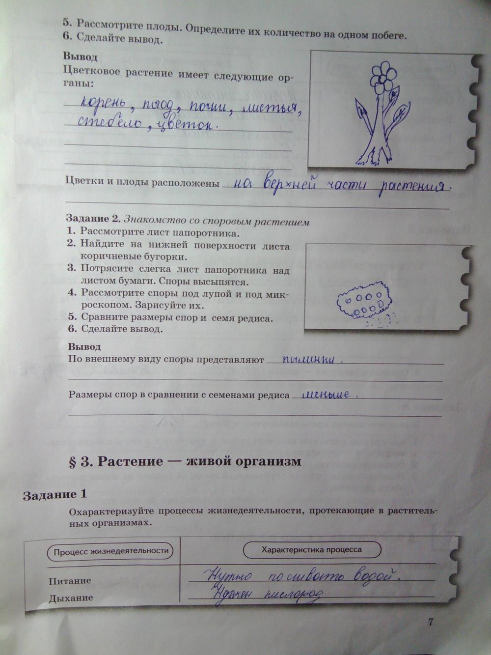 рабочая тетрадь по биологии 2 часть гдз пономарева