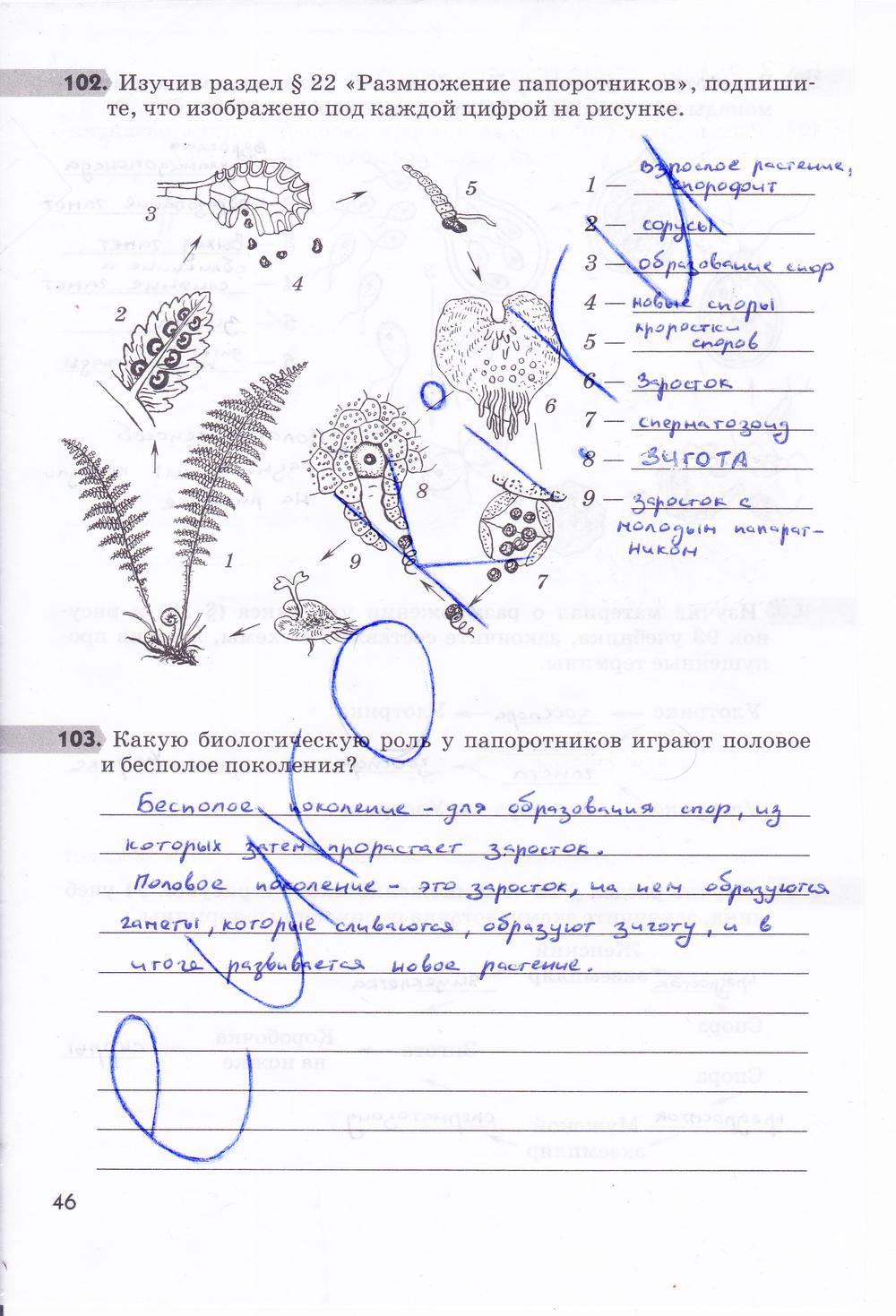 гдз по биологии пасечник 6 класс зелёная тетрадь