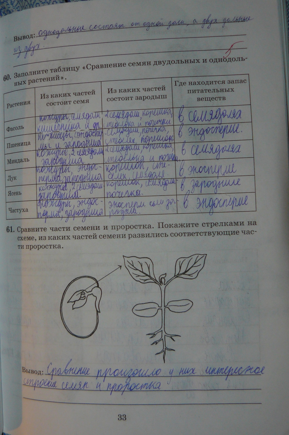 Гдз по биологии 6 класс пасечника рабочая тетрадь снисаренко пасечник