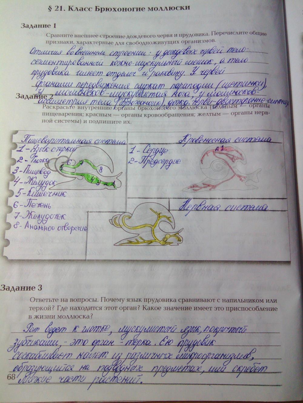 Готовые Домашние Задания 7 Класса По Биологии